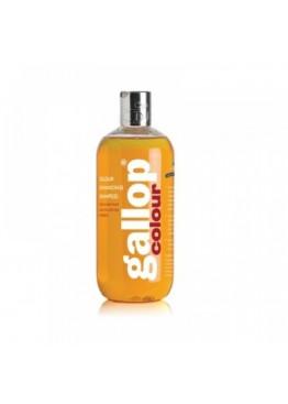 Шампунь для лошади для улучшения цвета, рыжий Gallop Colour Enhancing Shampoo, Carr&Day&Martin