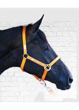"""Недоуздок """"Active Horses"""" - API"""